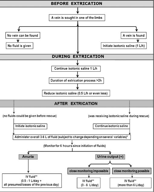 fluidos en el síndrome de aplastamiento